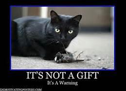 warningcat