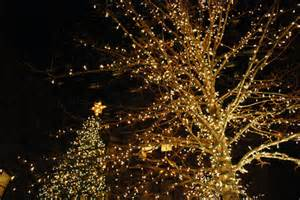 blogxmaslights3